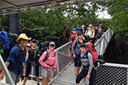 Travelers at Ramsay Bay Boardwalk, Hinchinbrook Island